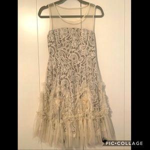 Rye lace mesh dress